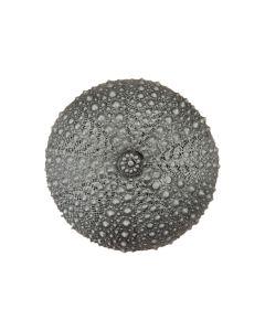 Antique Pewter Sea Urchin Cabinet Knob